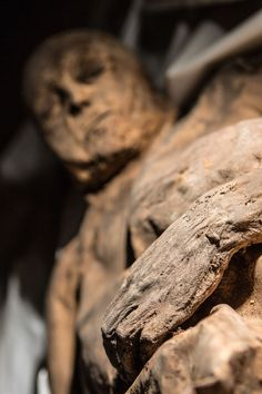 Smallpox Found in Lithuanian Mummy Could Rewrite Virus' History