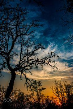 last light -