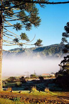 Brasil...  Serra do Corvo Branco, Santa Catarina.