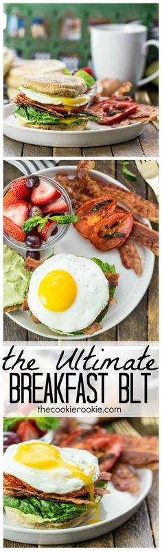 The Ultimate Breakfast BLT ~ an English muffin loaded with roasted tomatoes, crispy bacon, fresh lettuce, fried egg, and creamy avocado mayo for THE BEST BREAKFAST SANDWICH ever! Best Breakfast Sandwich, Savory Breakfast, Breakfast Dishes, Breakfast Time, Breakfast Recipes, Breakfast Ideas, Cooking Recipes, Healthy Recipes, Fruit Recipes