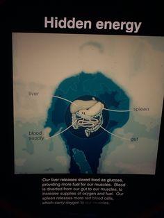 hidden energy
