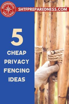 Are you looking for a way to get some privacy from the outside world? Putting up a fence is always a brilliant, instant way to do this. SHTF Preparedness explores five cheap privacy fencing ideas that you can use try that will make your home feel a lot more private than it does now. Check out this article for more information now. #privacyfencing #fenceideas #backyardfencing #cheapfencing Privacy Fences, Fencing, Emergency Preparedness, Survival, Best Money Saving Tips, Backyard Fences, Great Life, Useful Life Hacks, Shtf