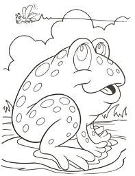 tree frog coloring page - Google Search