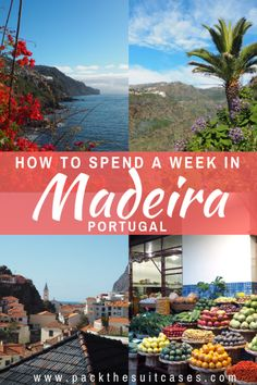 How to spend a week in Madeira: 7-day itinerary | PACK THE SUITCASES