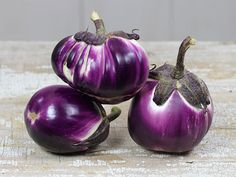 Prosperosa Eggplant: 75 days Massive fruits are nearly round to slightly teardrop shaped, and sometimes very slightly ribbed. Their rich dark purple exterior als. List Of Vegetables, Colorful Vegetables, White Eggplant, Eggplant Seeds, Cape Gooseberry, Bonsai Plants, Organic Plants, Rare Flowers, Garden Seeds
