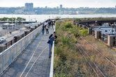 Visit the High Line in Manhattan - this is JUST like the children's book: The Curious Garden!