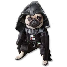 Darth Vader Dog Costume http://cooldogcostumes.com/product/darth-vader-dog-costume/