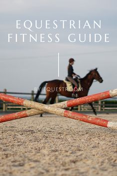 How To Improve Your Fitness To Improve Your Riding We, equestrians, are athletes just like in any other sport and whichever discipline we ride, our fitness is as important as the fitness and performance of our horses. Basic Workout, Workout Guide, Horse Training Tips, Horse Tips, Horse Exercises, Training Exercises, Inspirational Horse Quotes, Horse Riding Quotes, Stay In Shape