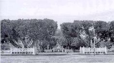 Alun alun or the square in front of Yogyakarta sultanate palace in 1920