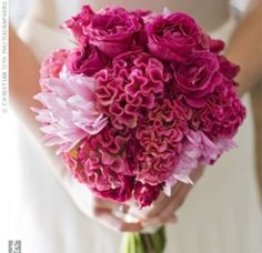 Raspberry roses, pink vanda orchids, dark pink cockscomb, white calla lilies, and light pink dahlias