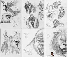 Just some recent sketches I've done in the previous year, showing everyone what I do on my spare time. As for what happened to RoughWorkDisplay2014-2015_06 (for those of you who are keeping track at home), I don't know. I think it might've contained work that I have not yet been prepared to release yet, because spoilers obviously.