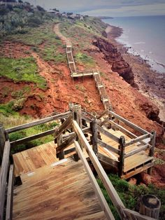 A clifftop boardwalk along the rocky coastline between Marino and Hallett Cove. There are lots of options as to how long to make this walk. Australia Capital, Australia Photos, Australia Travel, Sister Day, Adelaide South Australia, Landscape Pictures, Capital City, Garden Bridge, Climbing