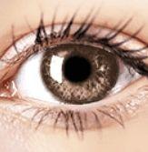 Air Optix Colors - Honey - Prescription Colored Lenses Prescription Contact Lenses, Prescription Colored Contacts, Contact Lens Solution, Halloween Contacts, Color Lenses, Eye Color, Honey, Colors, Colour