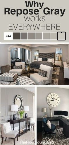 home decor painting Repose Gray from Sherwin Williams - Fabulously Neutral. The perfect greige, so it works in almost all rooms of your home. Grey Paint Colors, Bedroom Paint Colors, Paint Colors For Home, Room Colors, House Colors, Neutral Paint, Gray Color, Gray Yellow, Neutral Colors