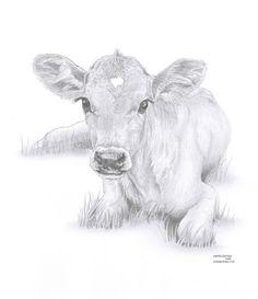 COW calf Limited Edition art drawing print signed by UK artist - Dies ist ist ein Digitaldruck in limitierter Auflage das Originalbildmaterial UK Artist Debra Jones - Animal Drawings, Pencil Drawings, Art Drawings, Drawing Animals, Cow Painting, Painting & Drawing, Cow Sketch, Cow Drawing, Drawing Ideas