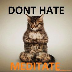 Don't hate--meditate.                                                                                                                                                     More