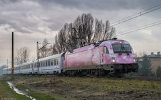 Trains on polish rail