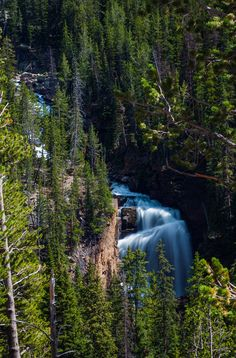 Long Exposure of Waterfall on Beartooth Highway Beautiful Places To Visit, Places To See, Beartooth Highway, Yellowstone Park, Pictures Of The Week, Exposure Photography, Long Exposure, Vacation Spots, Waterfall