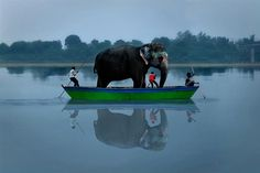 In India ~ an elephant in a tiny boat? Largest Countries, Countries Of The World, Amazing India, Photo Portrait, Elephant Love, Giraffe, People Of The World, India Travel, Beautiful World
