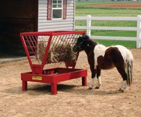 Hay feeder for Miniature horses