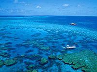Agincourt Reef Ribbon Reef, Great Barrier Reef, QLD, Australia