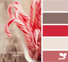 candy cane hues - like all these colors except bottom for house colors