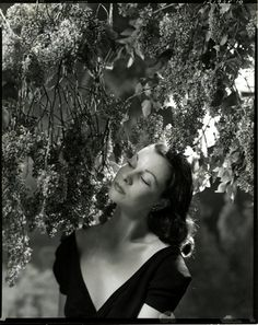 Vivien Leigh by Cecil Beaton (1939) by pictura poesis, via Flickr