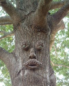 I'm putting faces on my trees when I'm old and awesome
