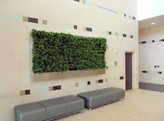 Awards of Excellence, Living Green Wall, Baylor Cancer Center