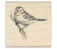 vintage sparrow sketch - Google Search