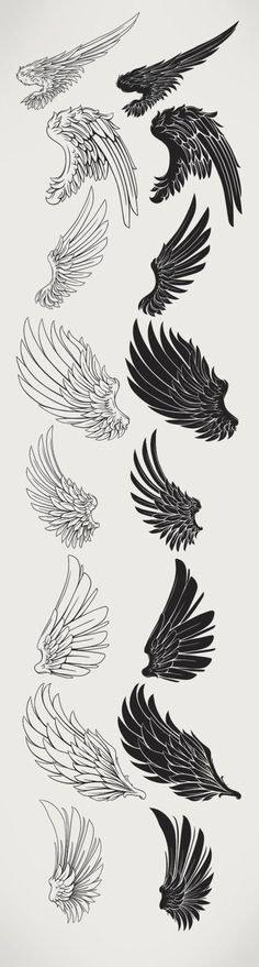 Wings/Black and white арт в 2019 г. tatuajes de alas, dibujo de alas и cosa Art Drawings Sketches, Tattoo Sketches, Tattoo Drawings, Body Art Tattoos, Drawing Tips, Drawing Reference, Sketch Drawing, Sketching, Brush Drawing