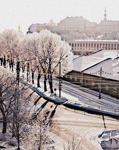 by e- winter in Tallinn, Estonia