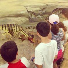 Sapevate che sul #MontePisano sono state trovate #impronte di #dinosauro ?