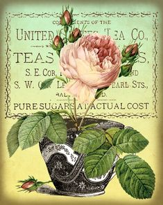 Antique Tea Cups and Roses Digital Collage Sheet Instant Download for Cards…