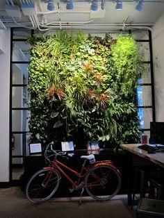 Vertical Garden at ING Direct Cafe, by Green Over Grey. Image ©Tamara Urben-Imbeault