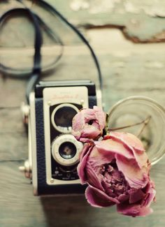 Peony & Vintage Camera Photo Art by Dull Blue Light on Scoutmob Shoppe. A dried peony lookin' even more lovely next to a vintage Kodak camera. Camera Photography, Vintage Photography, Art Photography, Dreamy Photography, Photography Equipment, Josie Loves, Camera Photos, Photo Deco, No Photoshop