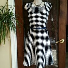 NWT Very Cool & Eye-catching Dress Size M New With Tag Very Cool and Eye-catching Dress from Shelby & Palmer. Navy blue and White symmetrical  pattern with Belt.  Size M.  Length 36 inches,  Waist 30 inches, Bust 36 inches. 94% Polyester / 6% Spandex Shelby & Palmer  Dresses Mini