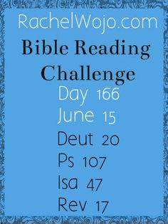 Bible Reading Challenge Day 166 #bibleinayear