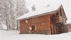 Location Chalet mitoyen Chalet bois 3* dans résidence avec piscine La Joue du Loup - 15679 | Chalet-montagne.com