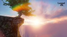 Mountain Tree #Biology, #Cloud, #FlyThrough, #Land, #Landscape, #Mountain, #Mountains, #Nature, #Sky, #Summer, #Sunrise, #Sunshine, #TimeLapse, #Tree, #Vpmax2007 https://goo.gl/xXhegX