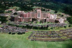 79 Hawaii Army Life History Ideas Army Life Hawaii Schofield Barracks