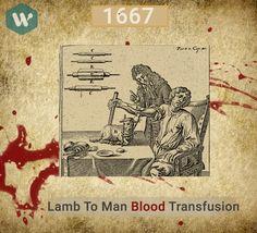 Lamb to Man Blood Transfusion #MobileApp #DoWhistle #BloodDonor