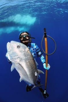 Spearfishing for Ulua
