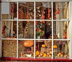 An Autumn harvest theme for a display in a shop window at Emsworth, Hampshire Fall Store Displays, Store Window Displays, Autumn Window Display Retail, Retail Displays, Shop Displays, Autumn Displays, Florist Window Display, Display Windows, Halloween Window Display