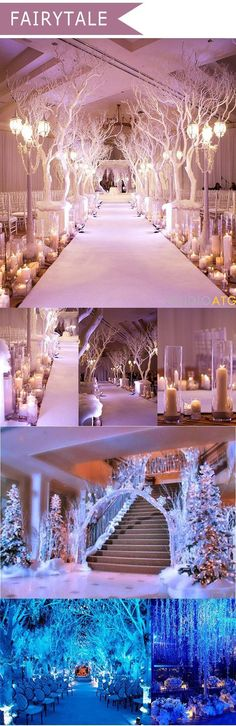 Take a look at the best winter wedding themes in the photos below and get ideas for your wedding! Winter wedding theme > sapphire blue, smoke grey, plum, marsala red and dramatic black Image source An aisle of white rose… Continue Reading → Wedding Ceremony, Wedding Venues, Wedding Ideas, Wedding Colors, Wedding Planning, Wedding Pictures, Wedding Sparklers, Wedding Stage, Birthday Pictures