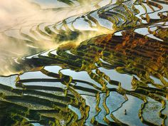 China's Rice Field Terraces Photography By: Thierry Bornier