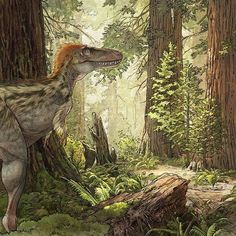 Tyrannosaurus rex by Beth Zaiken Prehistoric Wildlife, Prehistoric Creatures, Prehistoric Age, Amphibians, Reptiles, Lizards, Anthropologie, Jurassic World, Jurassic Park