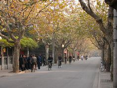 The Tranquil Sinan Lu in the Shanghai French Concession by bloompy, via Flickr