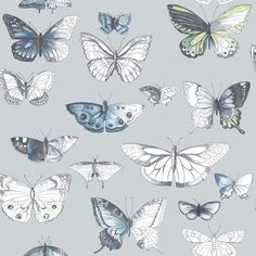 Fresco butterfies by Graham and Brown. A beautiful painterly effect butterfly design on a pastel blue background.