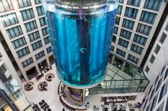 Aquadom Berlin - Heiraten im Aufzug oder Aquarium? - http://www.pureglam.tv/2014/03/01/aquadom-berlin-heiraten-im-aufzug-oder-aquarium/ -#Aquadom, #Berlin, #Location, #Radisson, #RadissonBlu, #Sealife